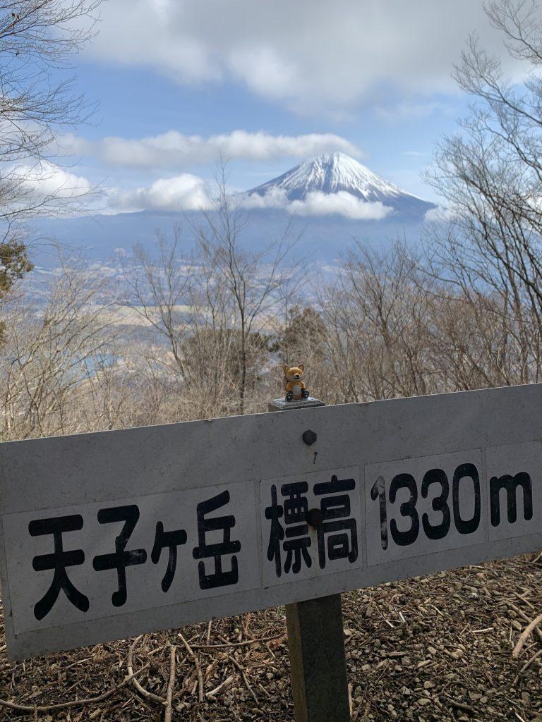 UTMF 天子ヶ岳